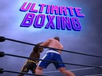 Ultimate boxing