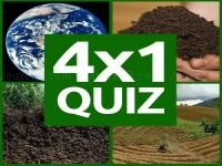 Jeu mobile 4x1 picture quiz