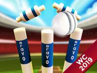 Jeu mobile Cricket world cup game 2019 mini ground cricke
